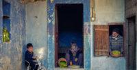 Zeytin Temalı Uluslararası Altınözü Foto Safari Yarışmasının Kazananları Belli Oldu