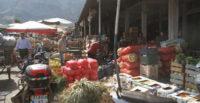 HBB'nin Sebze Hali Afrika'da bile yok