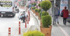 Samandağ'ın sokakları yeşilleniyor