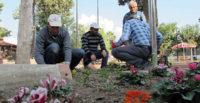 Çiçek ekimi ve Peyzaj Çalışmaları Aralıksız Sürüyor