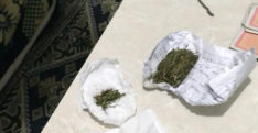 Yayladağı'nda uyuşturucu operasyonu: 8 gözaltı
