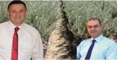 LÜTFÜ SAVAŞ, BURSA'DAN GETİRDİĞİN  600 BİN ZEYTİN FİDANINA SARIL…