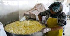 Gelin gittiği köyde süt işletmesi kurdu