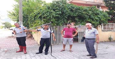 Eve giren yılan itfaiye ekiplerince yakalandı