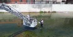 Hatay'da sulama kanalına düşen kediyi itfaiye kurtardı