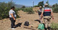 Saka kuşu yakalayanlara 9 bin 800 lira para cezası