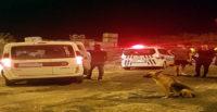 Polisten kaçmaya çalışan şahısların üzerinden kenevir çıktı