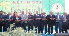 ZEYTİN DİYARI ALTINÖZÜ'NDE ALTIN FESTİVAL