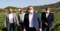 """MHP HATAY MİLLETVEKİLİ LÜTFİ KAŞIKÇI: """"TÜRKİYE, BAYIRBUCAK TÜRKMENLERİNİN ATA TOPRAĞIDIR"""""""