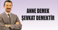 ANNE DEMEK ŞEVKAT DEMEKTİR